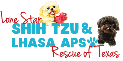Lone Star Shih Tzu Lhasa Apso Rescue We Have The Power